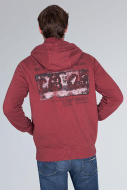 sweatshirt wit CCG-1910-3074 - 5/7